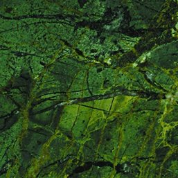 Green Peace Granite slab